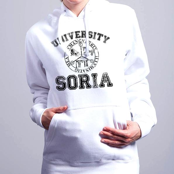 Soria University